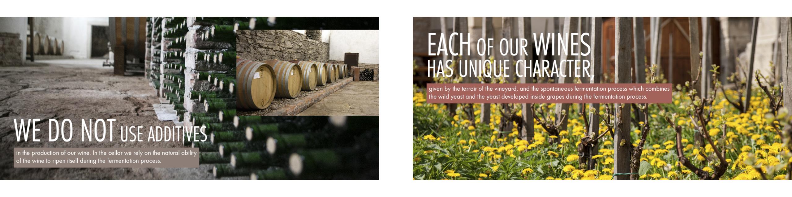 Design reklamní brožury Vinných sklepů Kutná Hora